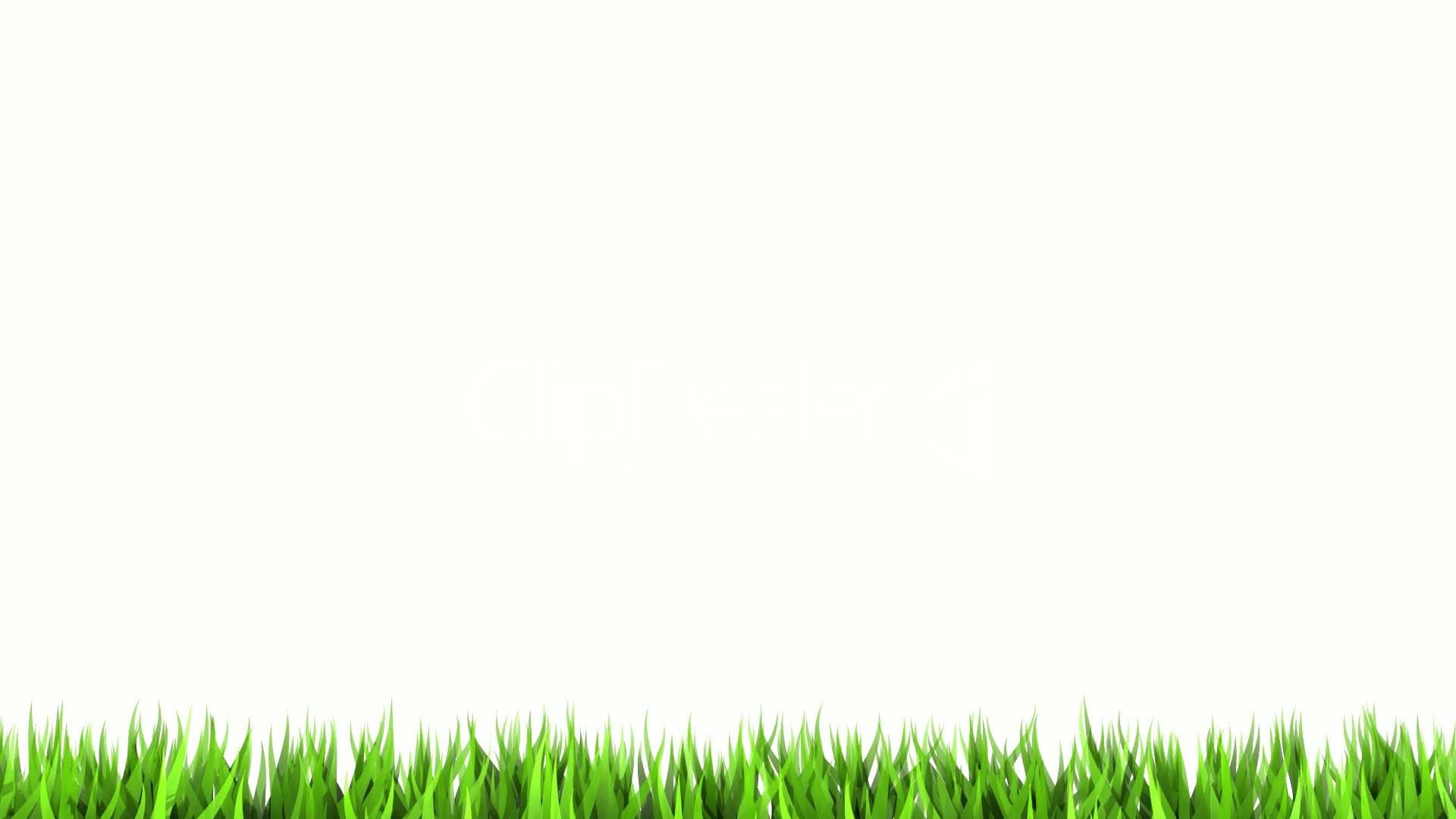 White-Background